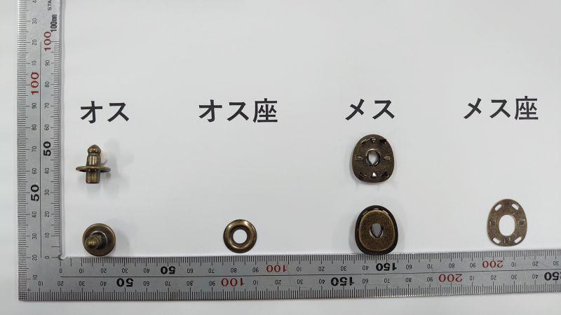 画像1: 【バラ】亀の甲オスメスセット B GA 5組 (1)